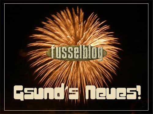 Neujahresfeuerwerk Fusselblog